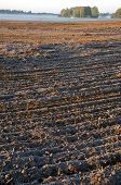 Plowed Frosty Autumn Farmland Field And Mist