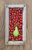 Rose Hips Fruit And Pear In Old Window Frame