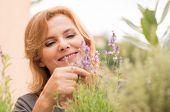 Portrait Of Mature Female Gardener Smell The Lavender