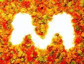 Flowers letter M.