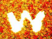 Flowers letter W.