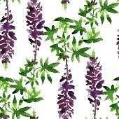 seamless pattern with lupine drawing by watercolor