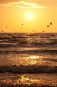Sunset In Baltic Sea