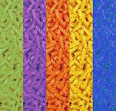 Multicolored Collage Of Dry Pasta Spirals.food Background.