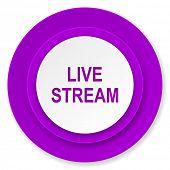 live stream icon, violet button