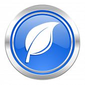 nature icon, blue button, leaf sign