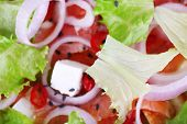 Appetizing fish salad with vegetables on plate close-up background