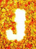 Flowers letter J.