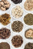 Herb selection used in chinese herbal medicine in porcelain bowls over white background.