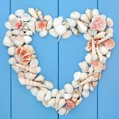 pic of cockle shell  - Sea shell selection forming a heart frame over wooden blue background - JPG