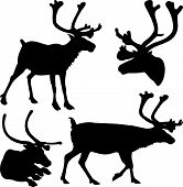 reindeer - vector silhouettes and icons