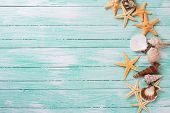 picture of shells  - Different marine items on turquoise wooden background - JPG