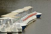 stock photo of pedal  - the line of duck pedal boats in the park - JPG