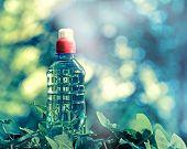 pic of bottle water  - Bottled spring water  - JPG