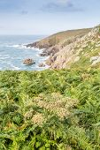 foto of st ives  - Stunning cornish coast path along the rocky scenery from st ives to zennor in cornwall england uk - JPG
