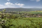 Landscape Near Veszprem