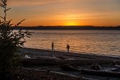 stock photo of stroll  - Two people stroll along the shore as the sun sets at Seahurst Park in Burien - JPG