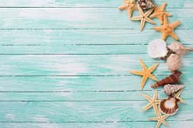stock photo of sea life  - Different marine items on turquoise wooden background - JPG