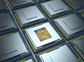 pic of cpu  - top up view of an array of CPUs one cpu is without the cover and the circuits are visible  - JPG