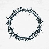 picture of crown-of-thorns  - Crown of thorns Jesus Christ - JPG
