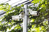 stock photo of cctv  - Multiple Angle Outdoor CCTV Camera on the Pole near the Tree - JPG