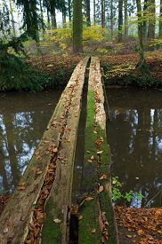 stock photo of primite  - primitive bridge made out of some planking - JPG