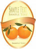 Orange label with two tangerines. Vector.