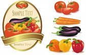 Group of vegetables and label with vegetables. Photo-realistic vector illustration.