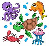 Marine animals collection - vector illustration.