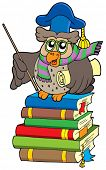 Owl teacher with parchment on books - vector illustration.