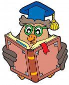 Libro de lectura profesor de buho - ilustración vectorial.