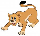 Cartoon puma on white background - vector illustration.
