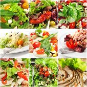 Collage from Photographs of Seafood and Meat Salad with Rich Greens