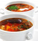 Постер, плакат: Рыбные супы с овощей и трав
