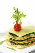 Salmon Lasagna with Spinach, Cherry Tomato and Herbs