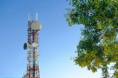 Mobile Phone Communication Antenna Tower With Cloud On Center Blue Sky Background And Tree poster