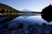 stock photo of trillium  - Mount Hood and Trillium Lake in the Mount Hood National Forest - JPG
