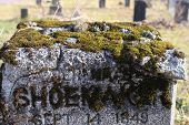 stock photo of funeral home  - Moss growing in the letters of a tombstone - JPG