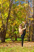 Yoga Trivikrama Sana Pose