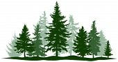 Green Forest Evergreen Pine, Tree Isolated. Park Christmas Tree. Individual, Separate Objects. Vecto poster