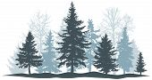 Winter Forest Evergreen Pine, Tree Isolated. Park Christmas Tree. Individual, Separate Objects. Vect poster