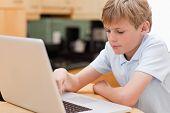 fokussierte Junge mit einem Laptop in einer Küche