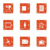 Companion Icons Set. Grunge Set Of 9 Companion Icons For Web Isolated On White Background poster