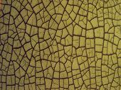 Green Cracked Background Texture Pattern
