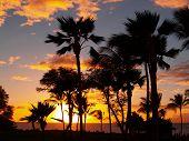 Maui zonsondergang