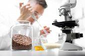 In Vitro Plant Genetics. Plant Laboratory. The Lab Technician Analyzes The Microscope In The Laborat poster