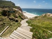 Scenic Walk At The Cape Of Good Hope On The Cape Peninsula Near Cape Town, South Africa. Cape Of Goo poster