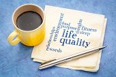 life quality concept - handwriting on a napkin with a cup of espresso coffee poster