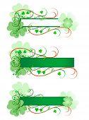 Fancy Irish Signs