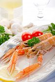 image of norway lobster  - norway lobster with tomatoes and lemon on dish - JPG